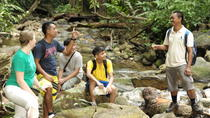 Half-Day Jungle Trek from Langkawi, Langkawi, Hiking & Camping