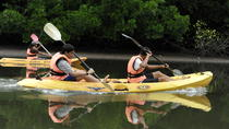 Mangrove Kayaking Tour from Langkawi, Langkawi, Kayaking & Canoeing