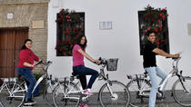 Bike Tour Around Cordoba, Cordoba, Bike & Mountain Bike Tours