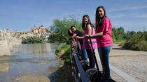 Cordoba Segway 2 hours Sightseeing Tour