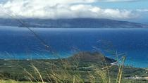 Tasting the Best of Maui Farm Tour, Maui, Bike & Mountain Bike Tours