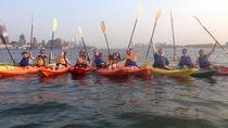 Skyline Kayak Tour of Manhattan, New York City, Kayaking & Canoeing