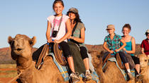 Alice Springs Camel Tour, Alice Springs, Half-day Tours