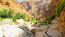 Full Day Small Group 4x4 Tour to Wadi Shab from Muscat, Muscat, Hiking & Camping