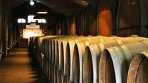 Setúbal Region Wine Tasting Private Day Trip from Lisbon, Lisbon, Day Trips