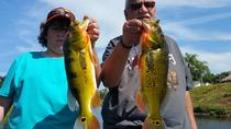 6-hour Bass Fishing Trip near Boca Raton, Fort Lauderdale, Fishing Charters & Tours