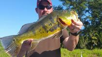 8-hour Bass Fishing Trip near Boca Raton, Fort Lauderdale, Fishing Charters & Tours