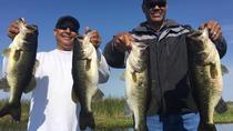 8-hours Rodman Reservoir Fishing Trip near Gainesville, St Augustine, Fishing Charters & Tours