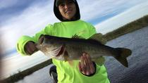 Rodman Reservoir Fishing Trip near Gainesville 4-hours, St Augustine, Fishing Charters & Tours