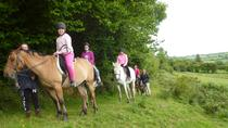 Scenic 1-Hour Horseback Ride Through Unspoiled Mountain Pastures in Tipperary, Tipperary