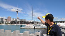 Auckland City Highlights Walking Tour, Auckland, Walking Tours