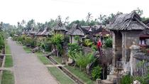 Full Day Kintamani and Penglipuran Village Private Chartered Car Tour from Bali, Bali, Day Trips