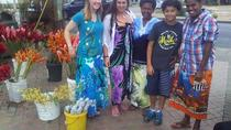 Mud Pool Tour with Garden of the Sleeping Giant Visit from First Landing and Vuda Hotels, Fiji, Day...