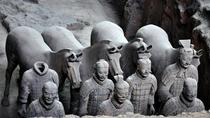 Half Day Private Tour of Terra-Cotta Warriors and Horses Museum, Xian, Private Tours