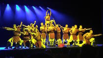 Kung Fu Show at The Red Theatre with Private Car Transfer, Beijing, Theater, Shows & Musicals