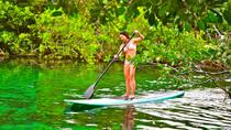 Private Tour: Stand Up Paddleboarding and Snorkeling in Tulum, Tulum, Other Water Sports