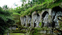 Private Bali Tour: Temples and Rice Terraces Tour, Ubud