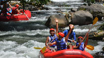 Bali Shore Excursion: White Water Rafting and Coffee Plantation or Agro Tourism Visit, Bali
