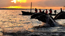 Dolphin Watching, Waterfalls and Ulundanu Temple Tour in Bali, Bali, Full-day Tours
