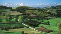 2 Days Langhe Experience: Food, Wine and Truffles in the Barolo and Barbaresco Regions, ...
