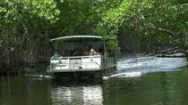 Appleton Rum Tour and Black River Safari Tour from Montego Bay and Grand Palladium, Montego Bay, ...