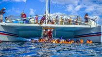 Catamaran Party Cruise and Dunn's River Falls Tour from Runaway Bay , Runaway Bay, Day Cruises