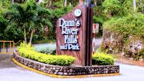 Dunn's River Falls and Ocho Rios Shopping Tour from Falmouth, Falmouth, Day Trips