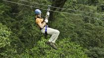 Montego Bay Shore Excursion: Zipline and Jungle River Tubing, Montego Bay, Ports of Call Tours