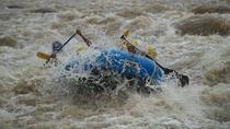 Rafting in The Sarapiqui River Class III - IV, San Jose, White Water Rafting & Float Trips