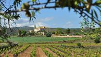 Penedes Region Wine and Food E-bike Tour with Transport from Barcelona , Barcelona, Day Trips