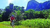 3-in-1 Ultimate Borneo Expedition Adventure, Kuching, Bike & Mountain Bike Tours