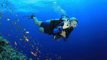 PADI Open Water Course in Gran Canaria, Gran Canaria, Scuba Diving