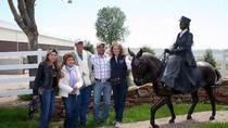 Mules and Sculpture Tour, Fort Collins, Nature & Wildlife