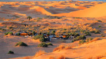 Overnight Tour to Zagora from Marrakech with Camel Trek and Berber Camp, Marrakech, Overnight Tours