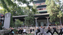 14-Day Shaolin Temple Kung Fu Retreat from Beijing, Beijing, Multi-day Tours