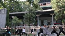 30-Day Shaolin Temple Kung Fu Experience from Beijing, Beijing, Multi-day Tours