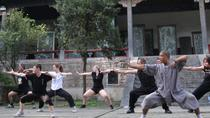 7-Day Shaolin Temple Kung Fu Training Program from Beijing, Beijing, Multi-day Tours