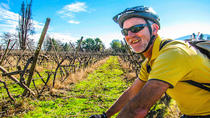 Full Day Bike and Wine Tour in Santa Rita, Santiago, Bike & Mountain Bike Tours