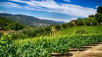 Into the North - Small Group Wine Tastings Tour, Porto, Wine Tasting & Winery Tours