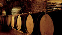 Concha y Toro Winery Half-Day Tour, Santiago, Wine Tasting & Winery Tours