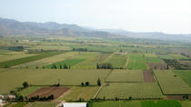 Full-Day Tour of Two Wineries in Casablanca Valley from Santiago, Santiago, Wine Tasting & Winery...