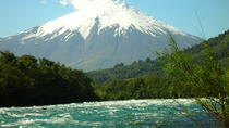 Osorno Volcano Tour from Puerto Montt, Puerto Montt, Half-day Tours