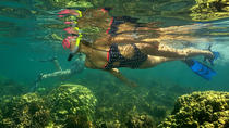 Kayak and Snorkel Tour from Flamingo Beach, Playa Flamingo, Kayaking & Canoeing