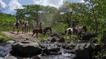 One Day Adventure: Natural Hot Spring with Mud, Horseback Riding and Canopy Tour From Playa Hermosa...