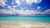 Grenada Island and Beach Tour, Grenada, Half-day Tours