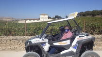 Ronda Gorge and Wine County Adventure by Buggy