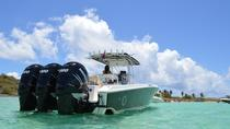 St Maarten Speed Boat Beach and Snorkeling Tour with Lunch, Philipsburg, Day Cruises