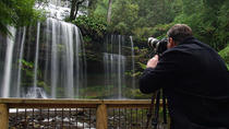 Mt Field and Styx Valley Photography Tour, Hobart, Cultural Tours