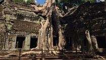 Half-Day Ta Prohm and Banteay Kdei Tour, Siem Reap, Half-day Tours