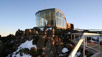 Small-Group Tour from Hobart Including Mt Wellington, Bonorong Wildlife Sanctuary and Richmond...